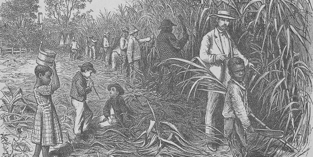 Articles Slavery And Emancipation In The Journal Of The