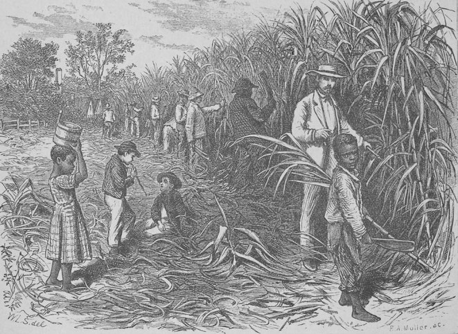 Edward King, The Great South (Hartford, Conn., 1875), p. 83 (Special Collections, University of Virginia Library) as shown on www.slaveryimages.org, compiled by Jerome Handler and Michael Tuite, and sponsored by the Virginia Foundation for the Humanities and the University of Virginia Library. (Click image for details)
