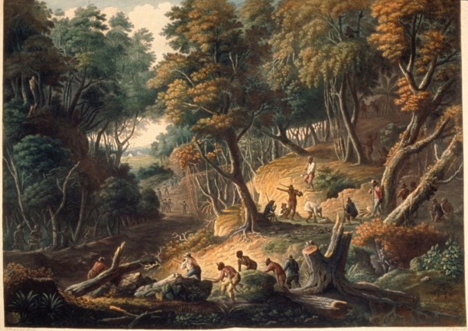 """The Maroons in Ambush on the Dromilly Estate in the parish of Trelawney, Jamaica, by J. Bourgoin; engraved by J. Merigot""; published by J. Cribb [London, 1801] as shown on www.slaveryimages.org, compiled by Jerome Handler and Michael Tuite, and sponsored by the Virginia Foundation for the Humanities and the University of Virginia Library. (Click image for details)"