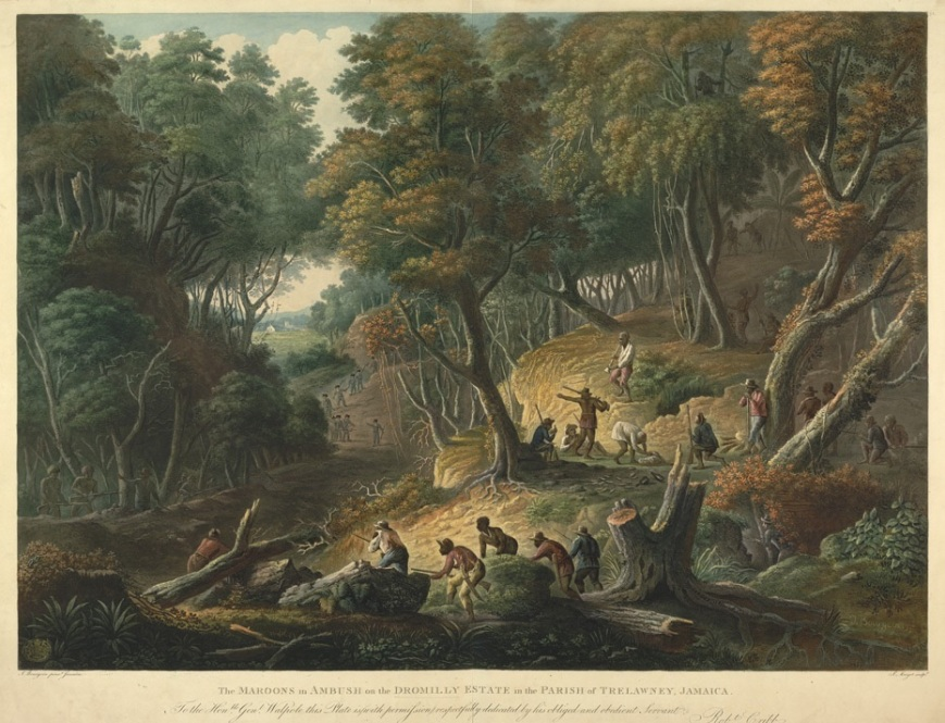 """The Maroons in Ambush on the Dromilly Estate in the parish of Trelawney, Jamaica"". The painting was doine be by F. C. Bourgoin and engraved by J. Merigot. It was published by J. Cribb (London, 1801). The dedication reads: ""To the Honble Genl. Walpole, this plate is with permission respectfully dedicated by his obliged and obedient servant, Robt. Cribb."" Found here: http://www.bl.uk/onlinegallery/onlineex/carviews/t/022ktop00000123u05900000.html"