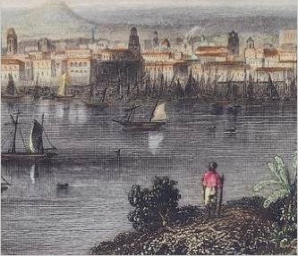 sugar revolution sba The haitian revolution 1791-1804   produced sugar, coffee, cocoa, indigo, tobacco, cotton, sisal as well as some fruits and vegetables for the motherland, france.